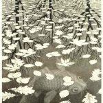 Cornelis Escher. Tre mondi, 1955, litografia