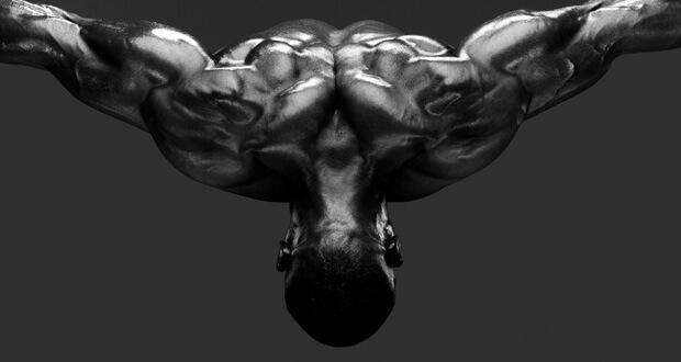 Howard Schatz. Body Power