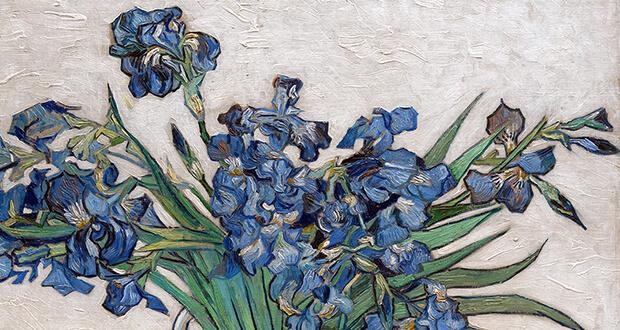 Van Gogh. Iris, (dettaglio)