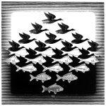 Cielo e acqua I, 1938, Xilografia. cm. 43,9 x 43,5