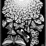 Escher. Farfalle, 1950. Incisione